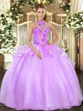 Lilac Organza Lace Up Quince Ball Gowns Sleeveless Floor Length Embroidery