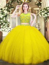 Sleeveless Beading Zipper Sweet 16 Dress