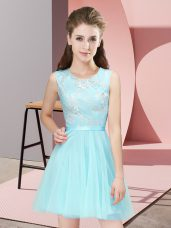 Super Sleeveless Lace Side Zipper Court Dresses for Sweet 16