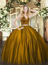 Best Brown Zipper 15th Birthday Dress Ruching Sleeveless Floor Length