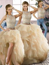 Classical Champagne Organza Zipper Sweet 16 Quinceanera Dress Sleeveless Floor Length Beading and Ruffles