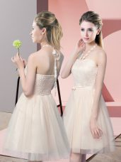 Eye-catching Sleeveless Tulle Mini Length Side Zipper Dress for Prom in Champagne with Lace