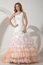 Colorful One Shoulder Organza Beading Wedding Dress