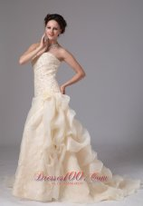 Champagne Embroidery Floral Jessie Wedding Dress