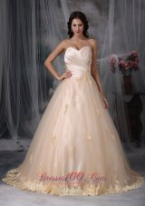 Champagne Sweetheart Bridal Wedding Dress Embroidery