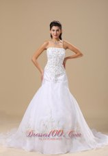 Exclusive Embroidery Wedding Dress Sheath Chapel Train