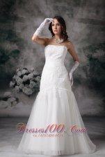 Mermaid Brush Lace Wedding Dress Strapless Tulle
