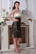 Olive Green Sheath Mom's Dress Knee-length Taffeta