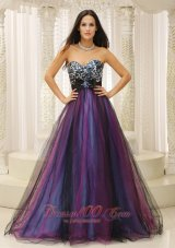 Brand New Baby Blue and Black Prom Dress Appliques - US$169.55