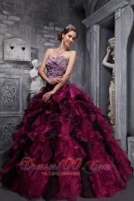 Wine Red Quinceanera Dress Appliques Floral Floor-length