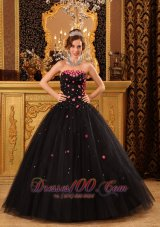 Black Quinceanera Dress Strapless Pink Floral 2012