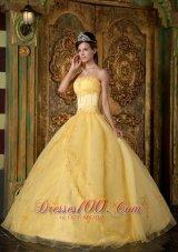 Yellow Appliqued Strapless Floor-length Organza Quinceanera Dress