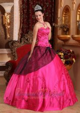 Embroidery with Beading Hot Pink Satin Quinceanera Dress