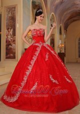 Red Sweet 16 Dresses Organza Embroidery and Beading
