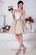 Colorful A-line Mini Appliques Prom Homecoming Dress