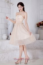 Champagne Short Appliques Prom Dress Knee-length
