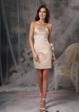 Champagne Prom / Cocktail Dress Column Flowers