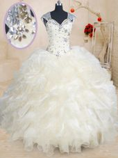 Dynamic Straps Cap Sleeves Zipper Sweet 16 Dress Champagne Organza