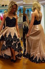 Champagne Zipper Bateau Lace Prom Dress Satin Sleeveless